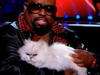 Cee-lo-green-cat