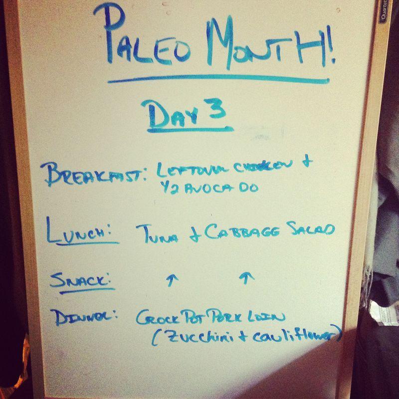 Paleo day 3