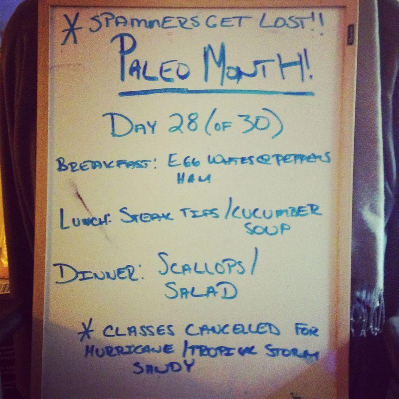 Paleo Day 28